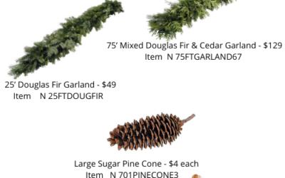 Holiday Preorder – Fresh Evergreens, Garland, Birch Poles & More
